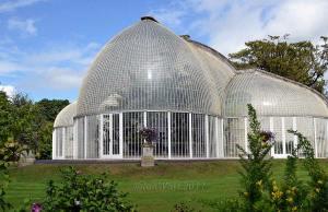 Bicton  c.Ian Watt http://www.botanicalgardenphotography.com/bicton-gardens.html