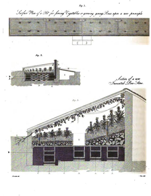 loudon.treatise.pinehouse