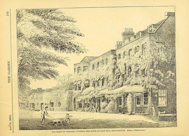 Salt Hill Hotel, from The Garden, August 3o, 1873