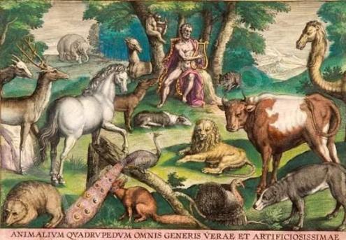 Animalum quadrapedum omnis generis verae et artificiosissimae, by Adriaen Collaert, [d.1618]