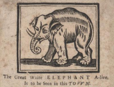 ―The Great White Elephant‖ (Printed between 1702 and 1714) Bodleian Library, University of Oxford