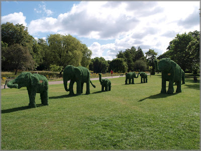 fromhttp://londonselephants.blogspot.co.uk  Regents Park July 2008