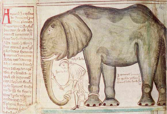Henry III's elephant from Matthew Paris, Corpus Christi College, Cambridge, Parker Ms 16.
