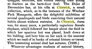 The menageries: Quadrupeds, described and drawn from living subjects.. By James Rennie,18xx
