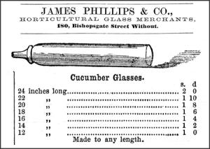 Cucumber-Straightener--C--2