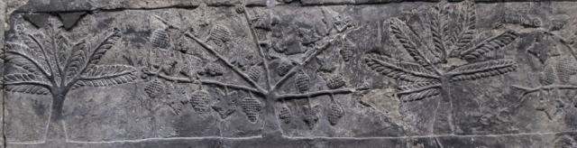 Detail from a stone relief from xxxx Britsih Museum