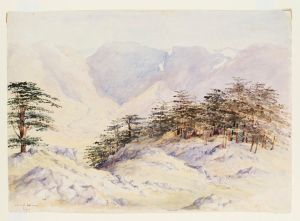 watercolour by Maria Matthias, 1857 V&A
