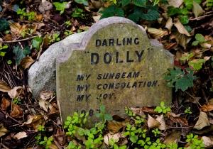 from http://londoninsight.wordpress.com/2010/10/06/pet-cemetery-hyde-park/
