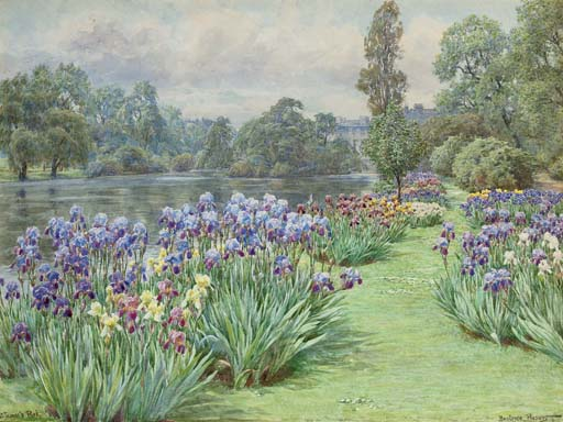 Iris Time in St James's Park