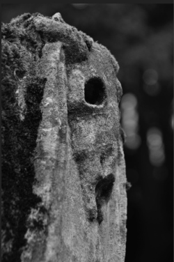 Detail from Azor's monument, St Mary's churchyard, Orchardleigh image courtesy William Bishop