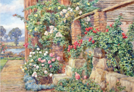 September Roses, Hamper Mill