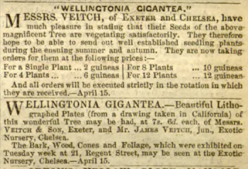 From Gardener's Chronicle, 15th April 1854
