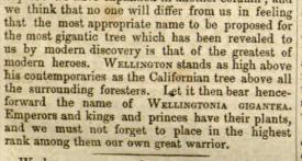 from Gardener's Chronicle 23rd Dec 1853