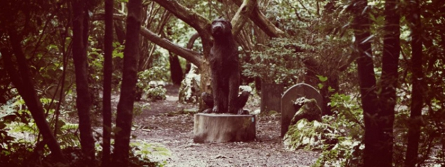 The Dog Cemetery at Portmeirion http://www.festivalnumber6.com/content/view/137/368/4104