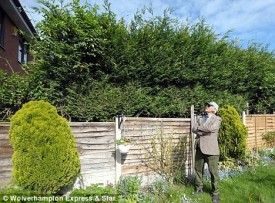 Hedge drama: Ex-regimental sergeant major Eric Harper (pictured) has taken his neighbours to court over their 15ft-high Leylandii conifers in Wolverhampton Daily Mail, 19th May 2009