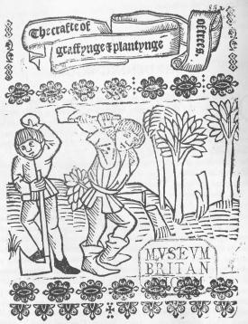 The crafte of graffynge & plantynge of trees,  c.1520, British Library