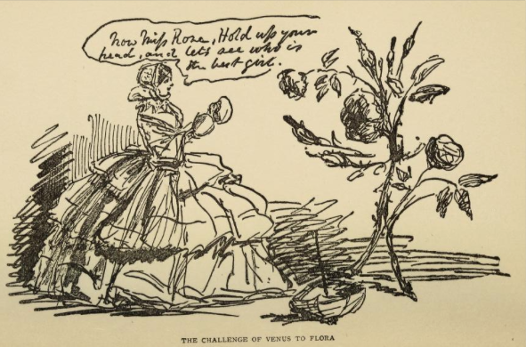 Sketch by John Leech from A Book aboout Roses