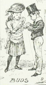 """Buds"" from A Summer Rose Show, Illustrated London News, 23rd June 1884"