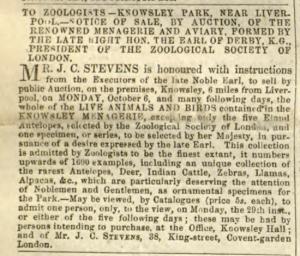 from Gardener's Chronicle, 13th September 1851