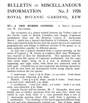 Frts page of Jackson and Dallimore's article in Kew Bulletin, 1926