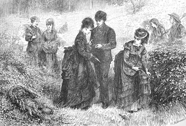 Gathering Ferns, by Helen Allingham Illustrated Loondon News 1st July 1871