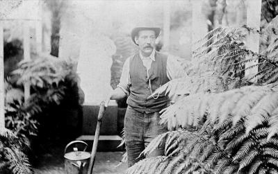 Gardener in a fernery http://museumvictoria.com.au