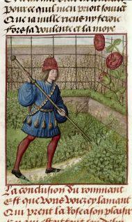 The Lover and the rose, Le Roman de la Rose. Bruges c.1490 British Library Harley 4425   f. 184v
