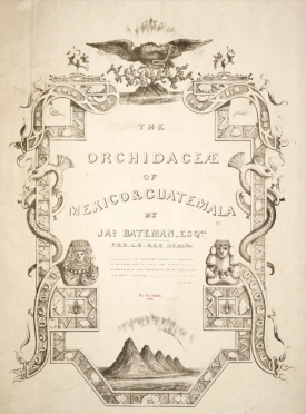 Tile page of The Orchidaceae of Mexico and Guatemala, James Bateman, 1837