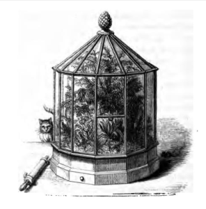 from On the growth of plants in closely glazed cases (1852)