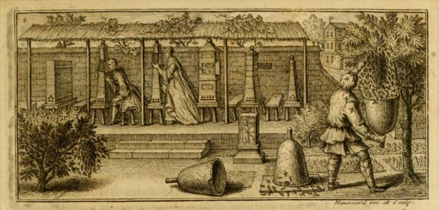 From Memoires pour Servir a l'Histoire des Insectes, Reaumur, 1740