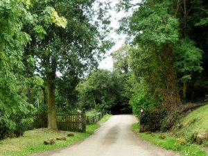 Access road to Standen © Copyright nick macneill and licensed for reuse under this Creative Commons Licence.