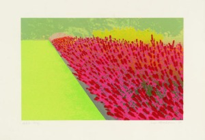 The Flower Garden , from Privacy Plots III