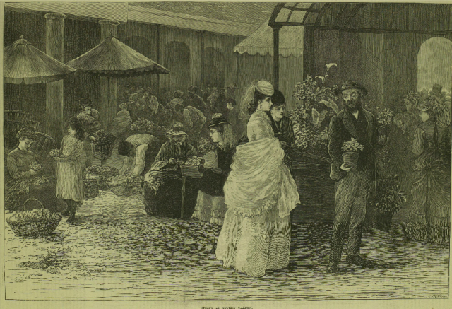 """Spring in Covent Garden."" Illustrated London News  25 May 1872"