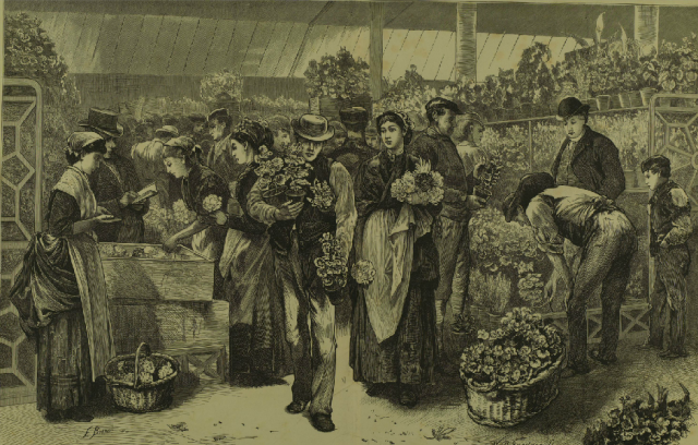 "Buckman, E. ""The Flower-Market, Covent-Garden."" Illustrated London News, 26 Apr. 1873"