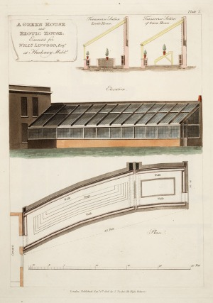 A green house and exotic house, from Tod, George / Plans, elevations and sections, of hot-houses, green-houses, an aquarium, conservatories, &c., 1823