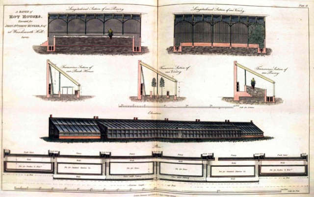 """""""A Range of Hot Houses executed for John Anthony Rucker, Esq"""" from  George Tod  Plans, elevations and sections, of hot-houses, green-houses, and aquarium, conservatories, &c, 1812"""