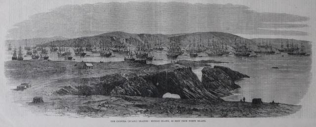 View of the Chincha guano islands, Peru Illustrated London News February, 21st, 1863