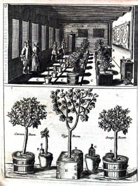 from Jan van der Groen Den Nederlandtsen hovenier, 1683