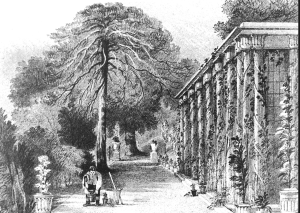 The orangery, from John Gendell's Fragments of Killerton, 1831