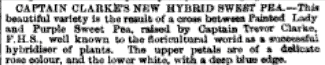 from Gardeners' Chronicle. Dec. 10, 1859 p. 990