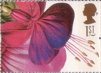 Fuschia Princess of Wales (Augusta Withers) -http://www.collectgbstamps.co.uk