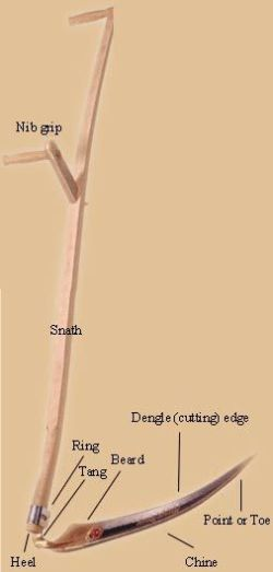 Diagram of a mowing scythe by Elliot Fishbein http://www.motherearthnews.com/homesteading-and-livestock/mowing-with-a-scythe-zmaz02fmzgoe.aspx