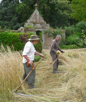 scything at Oxburgh Hall http://wildseed.co.uk/articles/2015/04/16/scythe-training-events-and-courses-2015