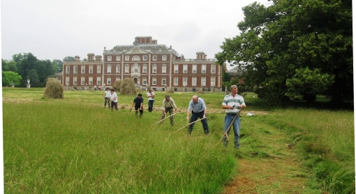 Scything at Wimpole http://wildseed.co.uk/articles/2015/04/16/scythe-training-events-and-courses-2015