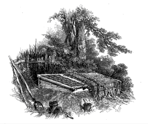 from the 1855 edition of The Task, illustration by Birkett Foster