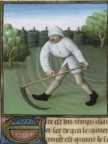 barthélemy l'anglais, de proprietatibus rerum 1480 BNF Ms Francais 9140