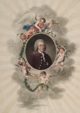 One of seevral images of Linnaeus in Temple of Flora