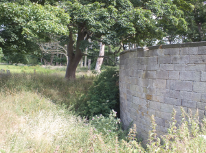 The ha-ha and retaining wall of the SE bastion David Marsh, July 2015