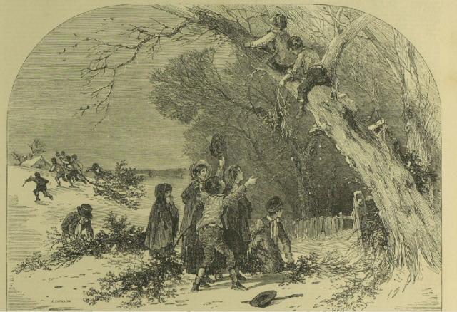 """My Mistletoe Memories."" Illustrated London News [London, England] 20 Dec. 1851: n.p. Illustrated London News. Web. 23 Nov. 2015."