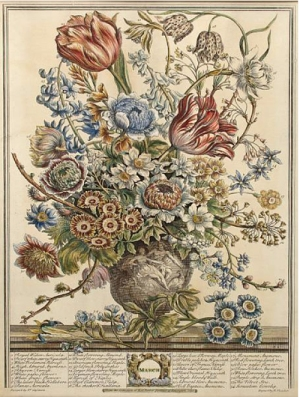 March from Furber's Twelve Months of Flowers, 1730